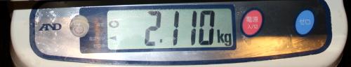 11.8 ooisama 2.110memori.jpg