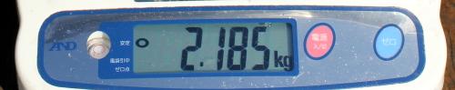 11.8 ooisama 2.185memori.jpg