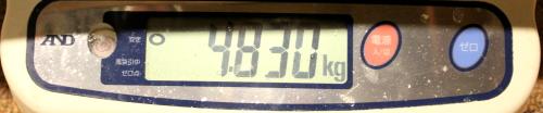 11.8 ooisama 4.830memori.jpg