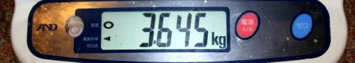 11.9 tanakasama 3.645memori.jpg