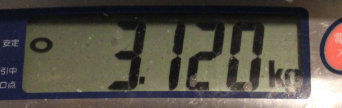 11.12 wadasama3.120.jpg